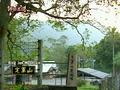 Dingjun.PNG