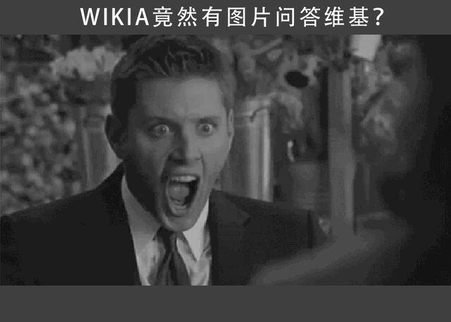File:问答维基3.jpg
