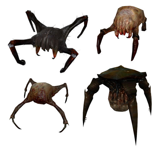 File:Headcrab models.jpg