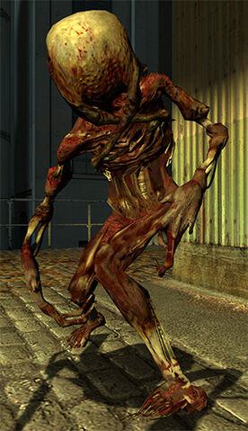 File:Fast headcrab zombie.jpg