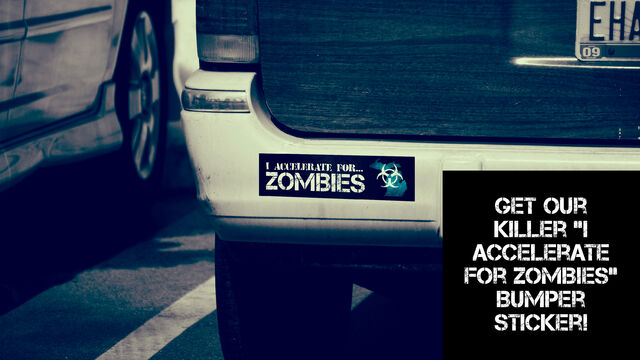 File:Totd bumperstickerindiegogo.jpg