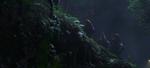 Officers walking through jungle