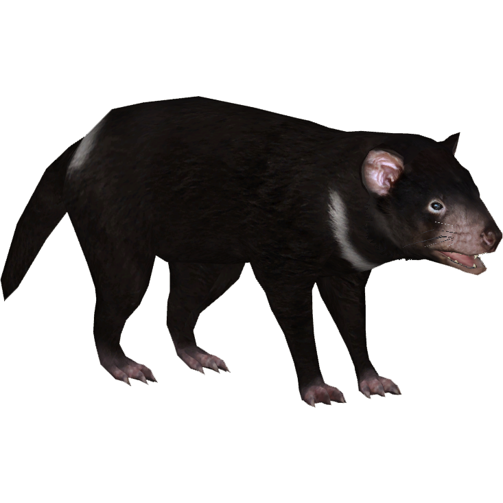 Round table discussion - Image Tasmanian Devil Zerosvalmont Png Zt2 Download Library Wiki