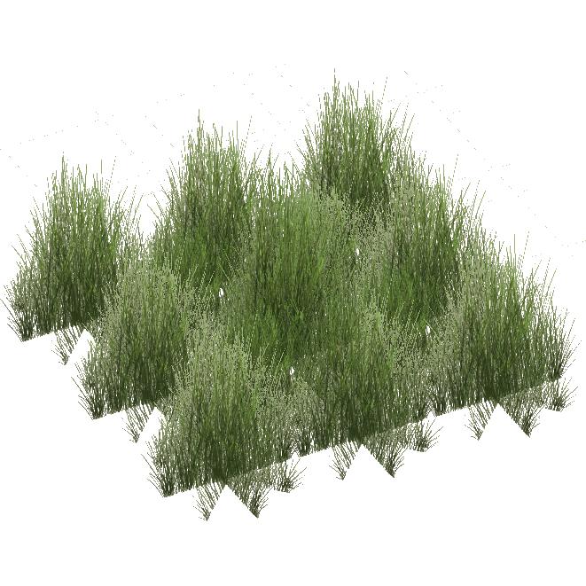 Grassland Grasses Jimmyzhoopz Zt2 Download Library