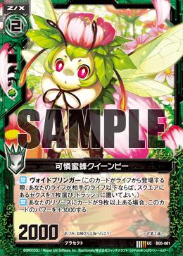 B05-081 Sample