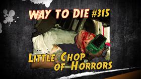 Little Chop of Horrors
