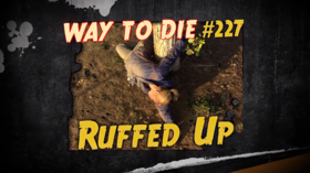 Ruffed Up