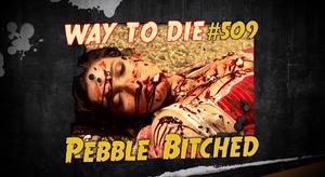 Pebble Bitched