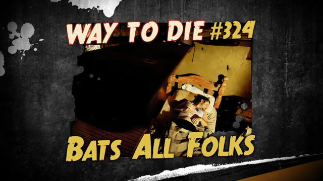 File:Bats All Folks.png