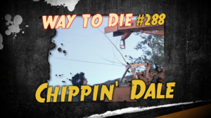 Chippin' Dale