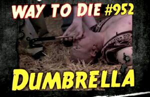 Dumbrella 2