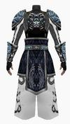 Fujin-7 star armor-male-back