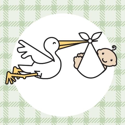 File:Baby Unknown.jpg