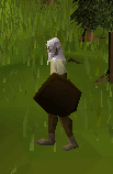 File:Wooden shield player.png