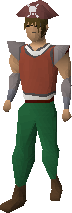 File:Pirate hat equipped.png