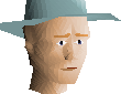 File:Turquoise hat chathead.png