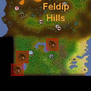 File:Red chinchompa location.png