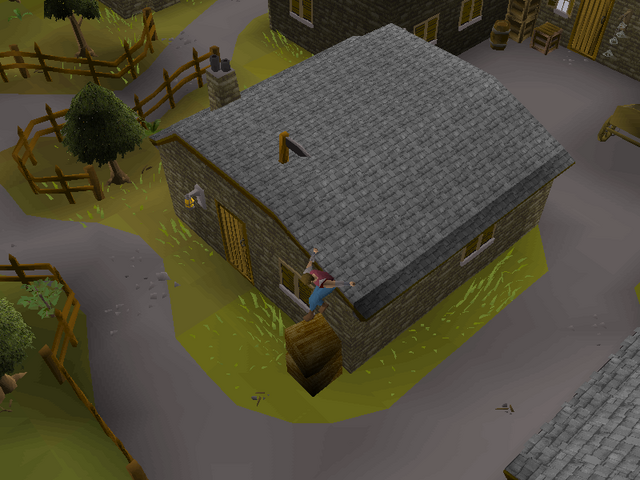 File:Draynor Village Agility Course 7.png