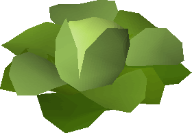 File:Robust cabbage.png