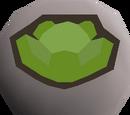Cabbage rune