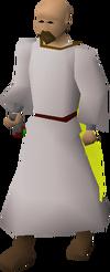 Saradomin wizard