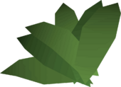 Irit leaf detail
