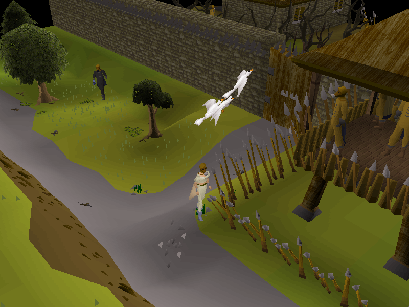 File:Releasing the Pigeons.png