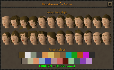 Hairdresser's Salon interface