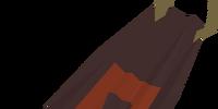 Team-41 cape