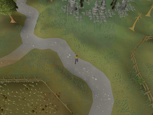 Hot cold clue - south of varrock