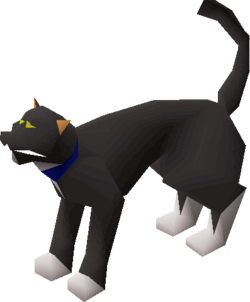 Cat (Wintertodt Camp)