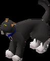 Cat (Wintertodt Camp).png