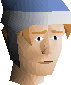 File:Mystic hat (blue) chathead.png
