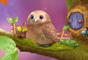3rd & Bird Owl