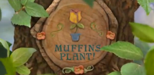 Muffin's Plant!
