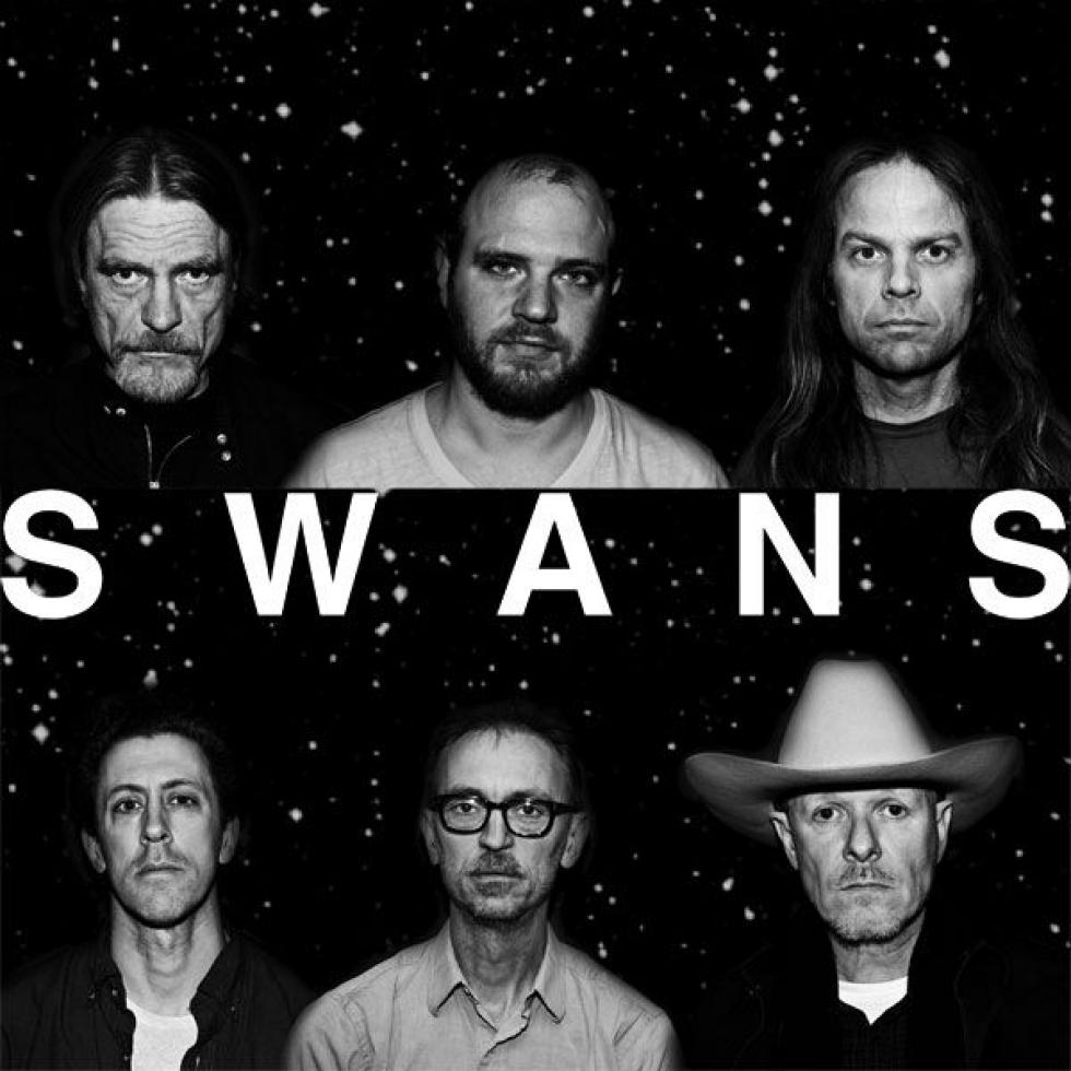 Swans Filth