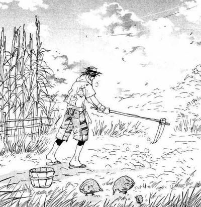 Izayoi in field1