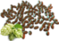 Hop Seed.png