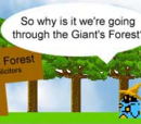 Giant's Forest