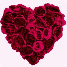 File:Heart3 - Copy222 - Copy.jpg