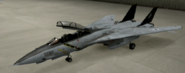 F-14D Standard color hangar