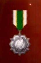 File:AC0 medal 12.png