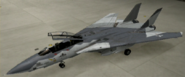 F-14D Knight color hangar
