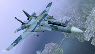 F-14D ACX Flyby 4