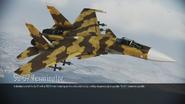 Su-37 Terminator loading screen