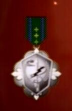 File:AC0 medal 3.png