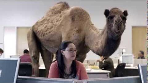 GEICO HUMP DAY COMMERCIAL DUBSTEP REMIX