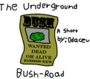 The Underground Bush-Road