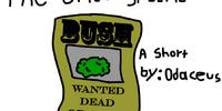 The Underground Bush-Road
