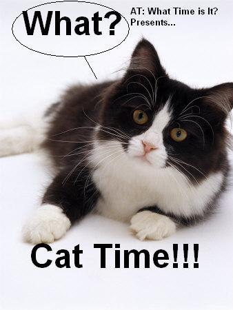 File:Cat Time.jpg